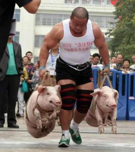 carry pigs for the Army Leg Tuck ACFT