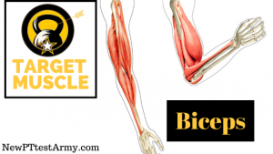 Army Leg Tuck ACFT Biceps Muscle