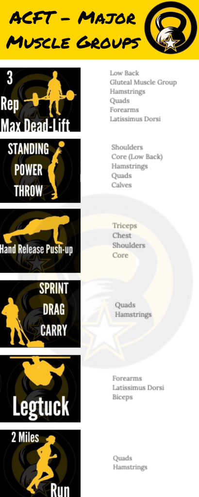 Army Workouts Muscle Groups
